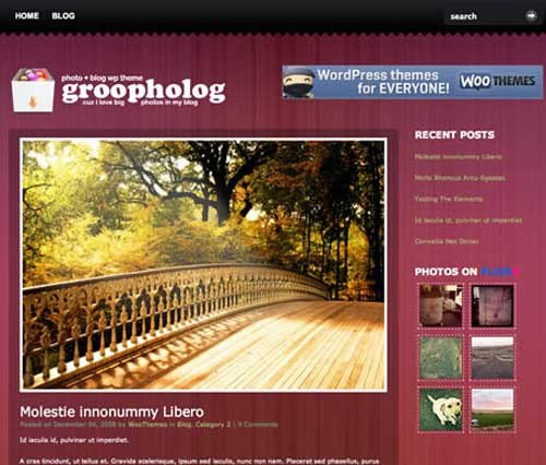 Wordpress Photography -3
