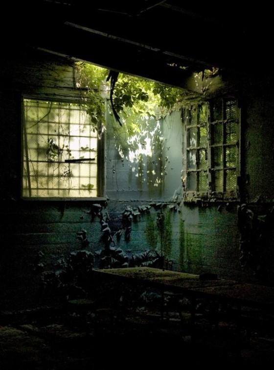 urban-decay-31