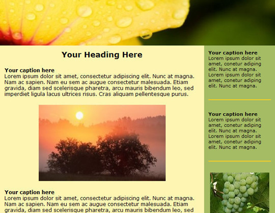 Free Newsletter Templates1