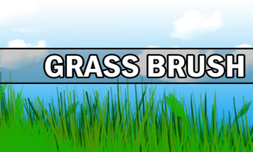 Grass Brush