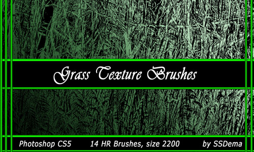 Grass Texture Brushes