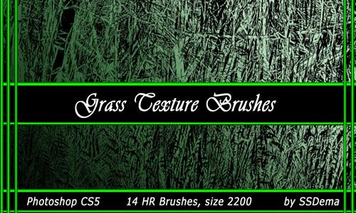 Grass Texture Brushes