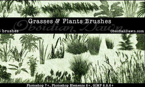 Grasses and Plants PS Brushes