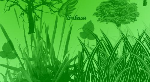 HisuiTsubasa Nature Brushes