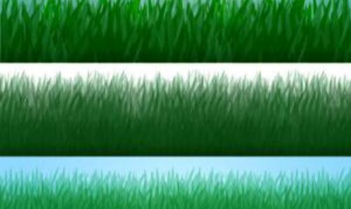 Photoshop Grass Strip Brushes