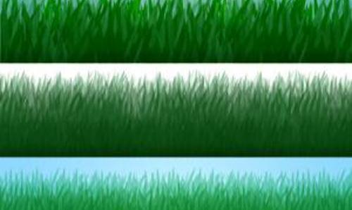 Photoshop Grass Strip Brushes