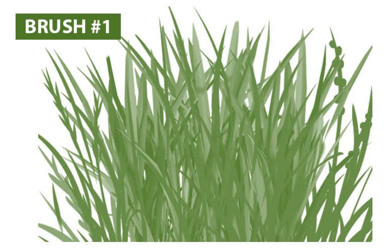 free photoshop grass