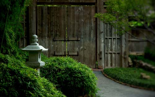 Gate To Green Garden