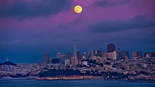 San Francisco Fever
