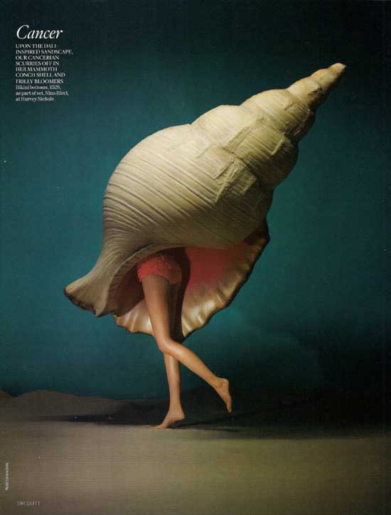 siri tollerod Into Calico Design Fashion Photography Art-18