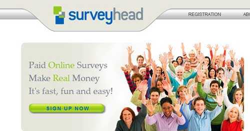surveyhead