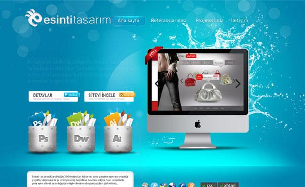 Esinti Web Tasarim