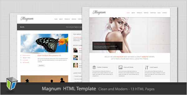 Magnum - Business and Portfolio HTML Template-4