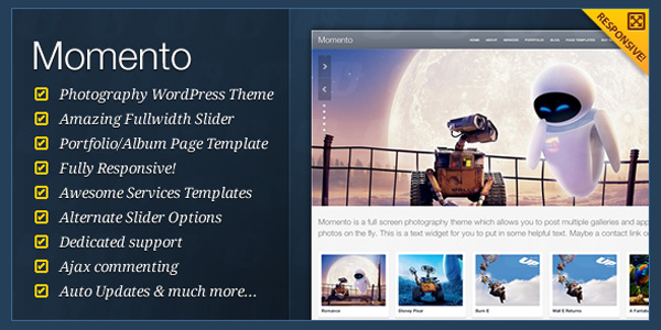 responsive-wordpress-themes-10