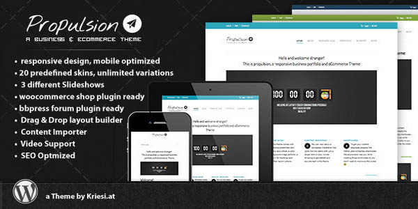 responsive-wordpress-themes-17