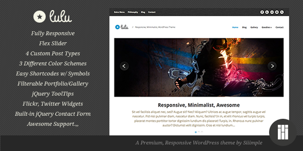 responsive-wordpress-themes-24