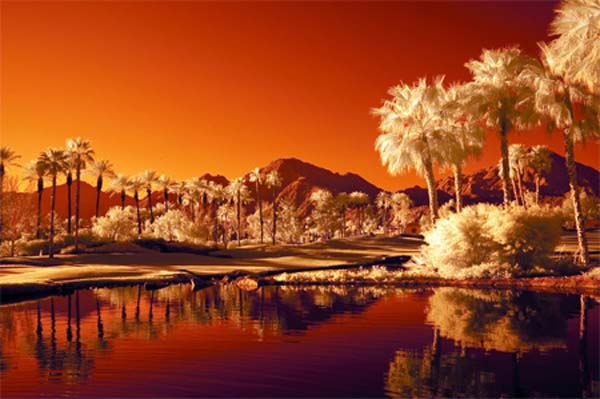 27 Palm Springs Infrared