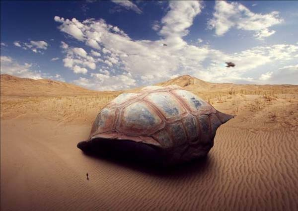 How to Create a Sci-Fi Giant Tortoise Shelter Photo-Manipulation on Photoshop
