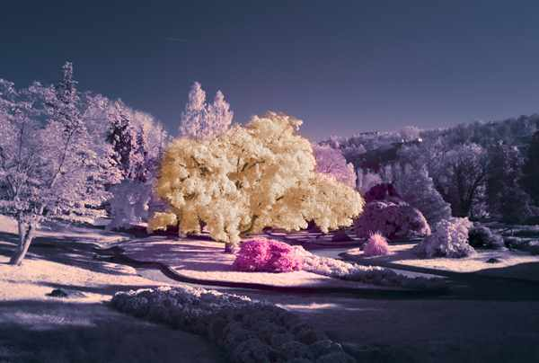 Leica M8 By Claudio Tizzani