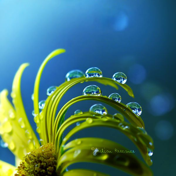 Under Water by Healzo