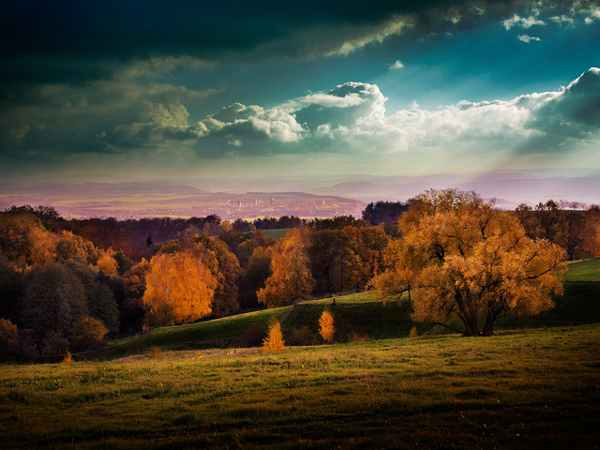 Burning Autumn