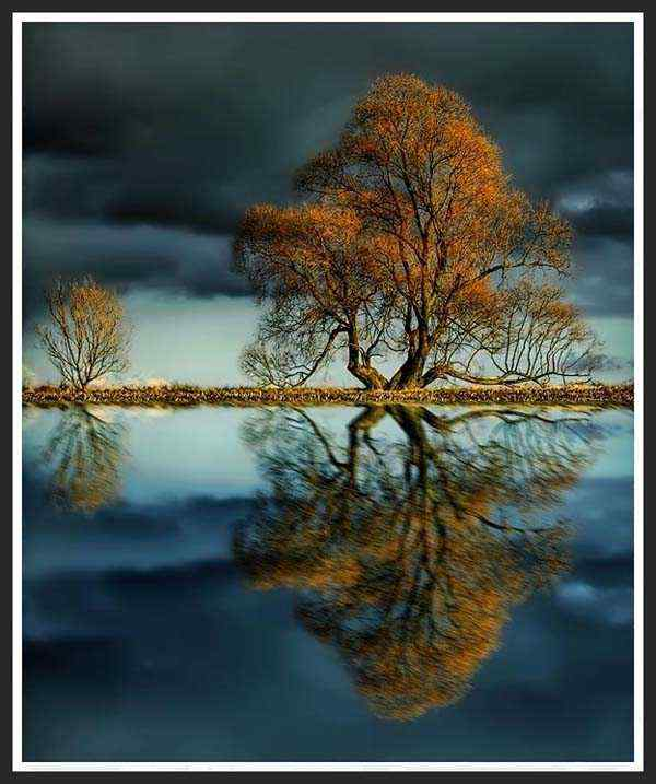 The wondrous by reflection photography