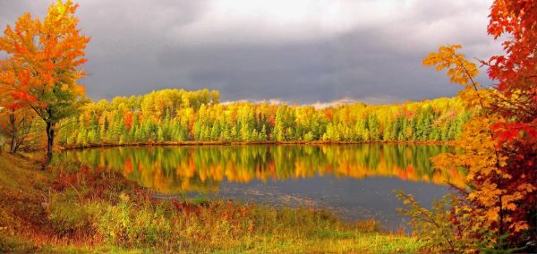Autumn At It's Best by Micheal