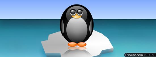 Penguin 50 Adet Facebook Kapak Resmi