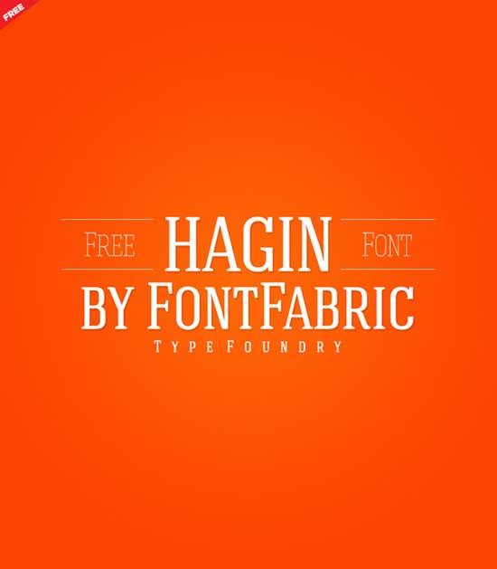 13-Hagin Serif