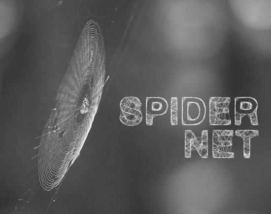 14-Spider Type