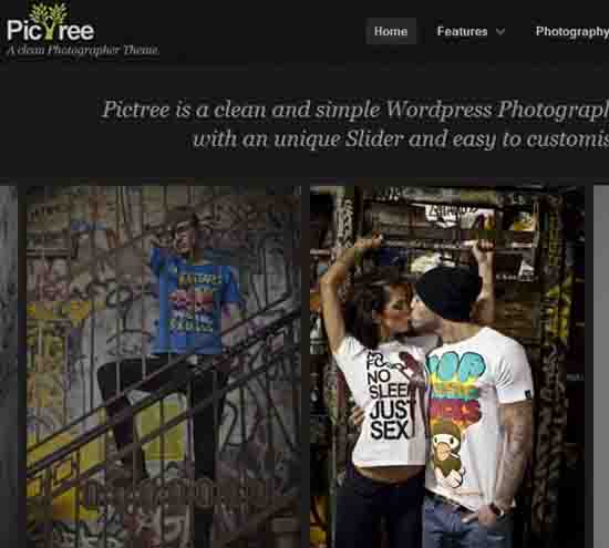 PicTree – A clean Photographer WordPress Theme