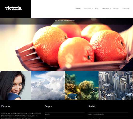 Victoria Portfolio & Photography WordPress Theme