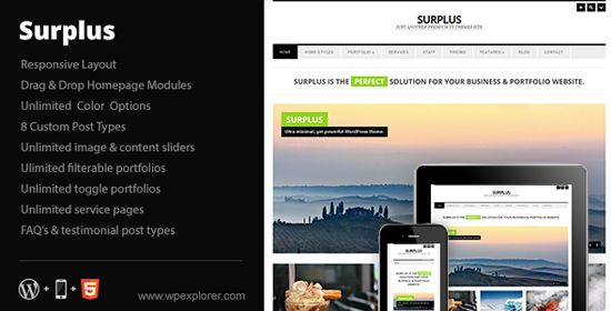 25-Surplus-minimal-responsive-business-wp-theme