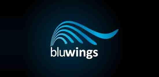 30-Bluwings