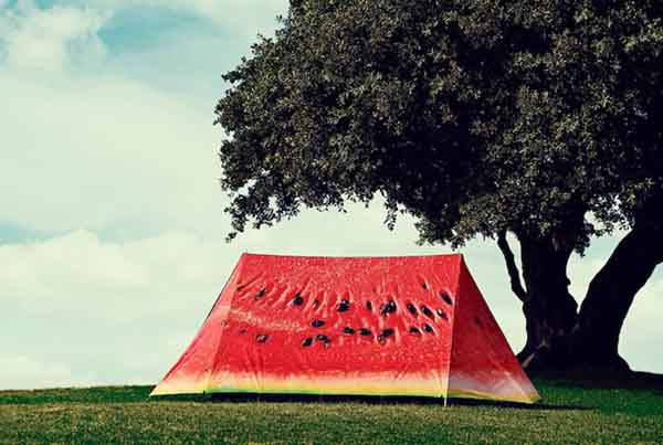 4-Camping Tents in Disguise