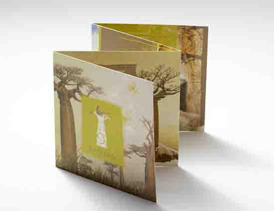 Brand Identity - Baobag