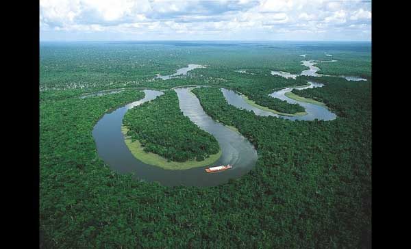 AmazonRainforestPhotos