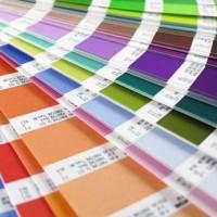 Excellent coordination of color palette