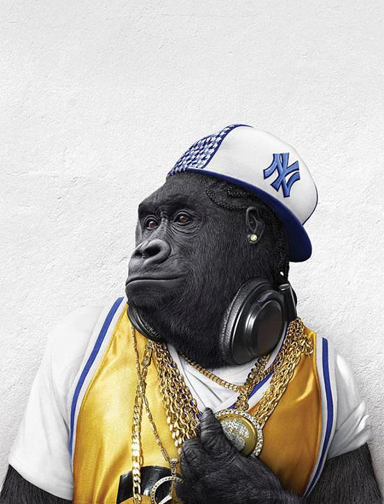 monkey-characters-31