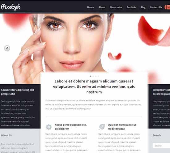 Pixeloph – Unique layout WordPress Theme