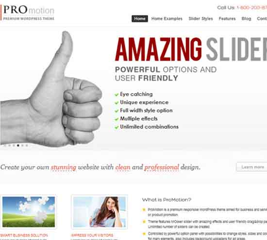 11-ProMotion-wp-business-responsive