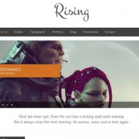 13-Rising-wp-business-responsive