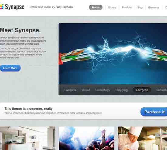 24-Synapse-wp-business-responsive