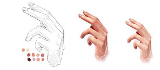 Drawing-a-Realistic-Human-Hand-using-Photoshop