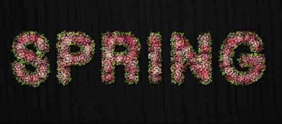 Making-of-a-Flowery-Text-Effect