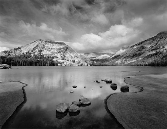 Nature Black and white photography