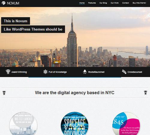 10-Novum-portfolio-wp-themes