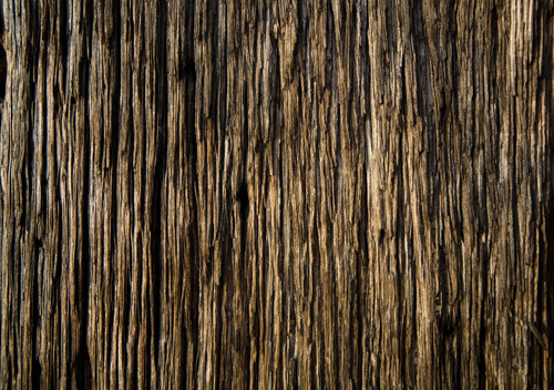 12-Wood Texture