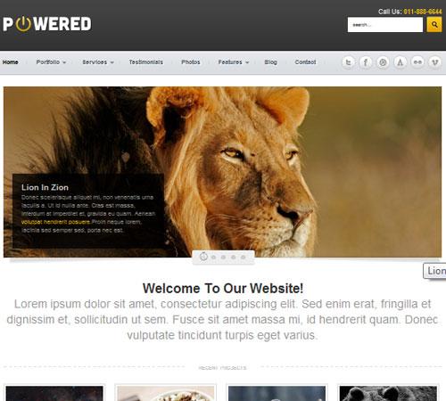 13-powered-business-portfolio-wp-themes