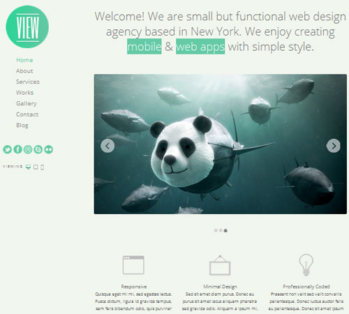 2-View-portfolio-wp-themes